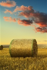 Preview iPhone wallpaper Fields, hay, clouds