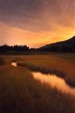 Grass, creek, mountains, morning