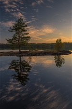 Preview iPhone wallpaper Lake, island, tree