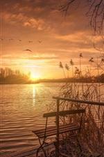 Preview iPhone wallpaper Lake, sunset, bench, grass, birds