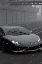 Lamborghini, supercar, snowy, black and white picture