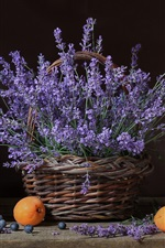 Preview iPhone wallpaper Lavender, flowers, basket, apricots, blueberries