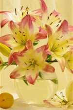 Preview iPhone wallpaper Lily flowers, apricots, still life