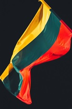 Lithuania flag, night