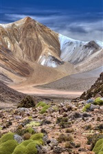 iPhone壁紙のプレビュー 山、石、自然の風景
