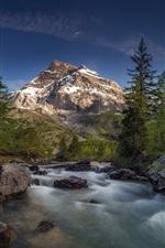 Mountains, stones, trees, river