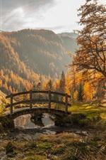 Preview iPhone wallpaper Mountains, trees, grass, little bridge
