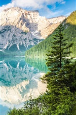 Preview iPhone wallpaper Mountains, trees, lake, water reflection