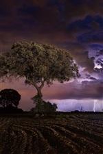 미리보기 iPhone 배경 화면 밤, 들판, 나무, 번개, 구름