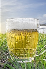 Preview iPhone wallpaper One cup of beer, water droplets, cold, grass