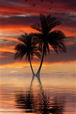Preview iPhone wallpaper Palm trees, sea, boat, sky, sunset, clouds