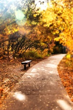 Preview iPhone wallpaper Park, trees, path, bench, autumn