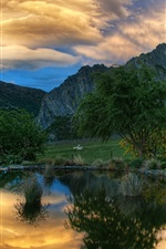 Pond, trees, mountains, goats, sunset