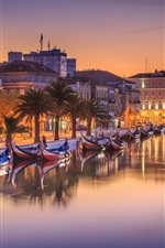 Preview iPhone wallpaper Portugal, city, river, boats, trees, houses, lights