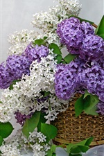 Preview iPhone wallpaper Purple and white lilac, flowers, basket