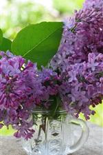 iPhone fondos de pantalla Flores púrpuras, lila, taza