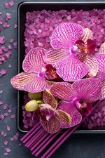 Preview iPhone wallpaper Purple phalaenopsis, petals, sea salt, SPA theme