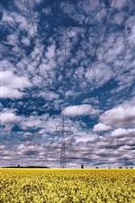 iPhone壁紙のプレビュー 菜の花花畑、動力線、雲、夏