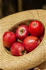 iPhone обои Красные яблоки, шляпа, солнце