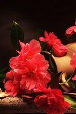 iPhone壁紙のプレビュー 赤い花、椿、花瓶