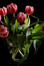 Tulipas vermelhas, vaso de vidro, fundo preto
