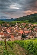 Preview iPhone wallpaper Riquewihr, France, city, houses