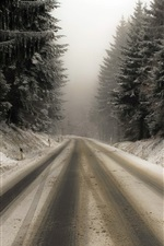 Preview iPhone wallpaper Road, snow, trees, fog, winter