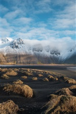 Preview iPhone wallpaper Sea, mountains, snow, grass, nature landscape