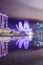 Preview iPhone wallpaper Singapore, city night, illumination, lake