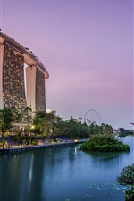 Singapore, garden, pond, lights, skyscrapers, evening