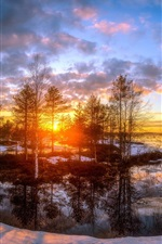 Preview iPhone wallpaper Snow, trees, river, sunset, winter