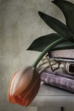 Preview iPhone wallpaper Some books, orange tulip