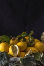 Preview iPhone wallpaper Some lemons, melon, wisteria, vase