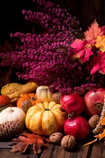 Preview iPhone wallpaper Still life, pumpkin, pomegranate, flowers, leaves