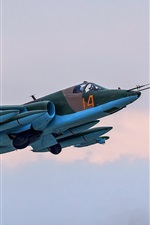 Preview iPhone wallpaper Su-25 blue fighter