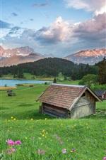 Summer, grass, flowers, houses, lake
