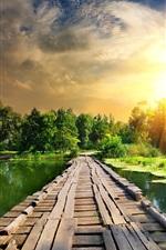 Preview iPhone wallpaper Summer, river, duckweed, wood bridge, lightning