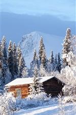 Suécia, floresta, casa madeira, neve, inverno