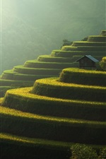 Preview iPhone wallpaper Terraced fields, green, slope, beautiful