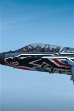 Preview iPhone wallpaper Tornado combat aircraft flight