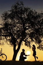 Preview iPhone wallpaper Tree, bike, silhouettes, lovers, sunset