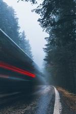 Деревья, дороги, светлые линии, скорость