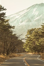 Preview iPhone wallpaper Trees, road, mountains