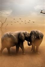 Two elephants, birds, dust