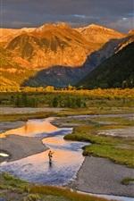 Eua, colorado, rio, montanhas, árvores, pescador, sol