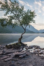 Preview iPhone wallpaper Wales, UK, trees, mountains, lake, water reflection