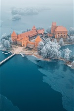 Preview iPhone wallpaper Water Castle, Lithuania, Trakai, trees, lake, winter