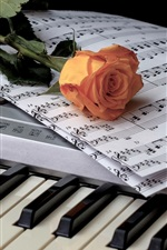 Preview iPhone wallpaper Wine, piano, music score, rose