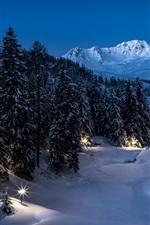 Winter, snow, night, trees, lights, park