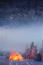 Winter, snow, night, trees, starry, tent